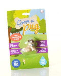 GROW A PUG